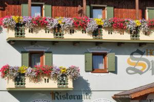 Hotel-Sport-Sappada-Dolomiti-Hotel-in-centro-a-Sappada-vicino-alle-piste-7-300x200